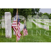 Arlington National Cemetery  -8-2